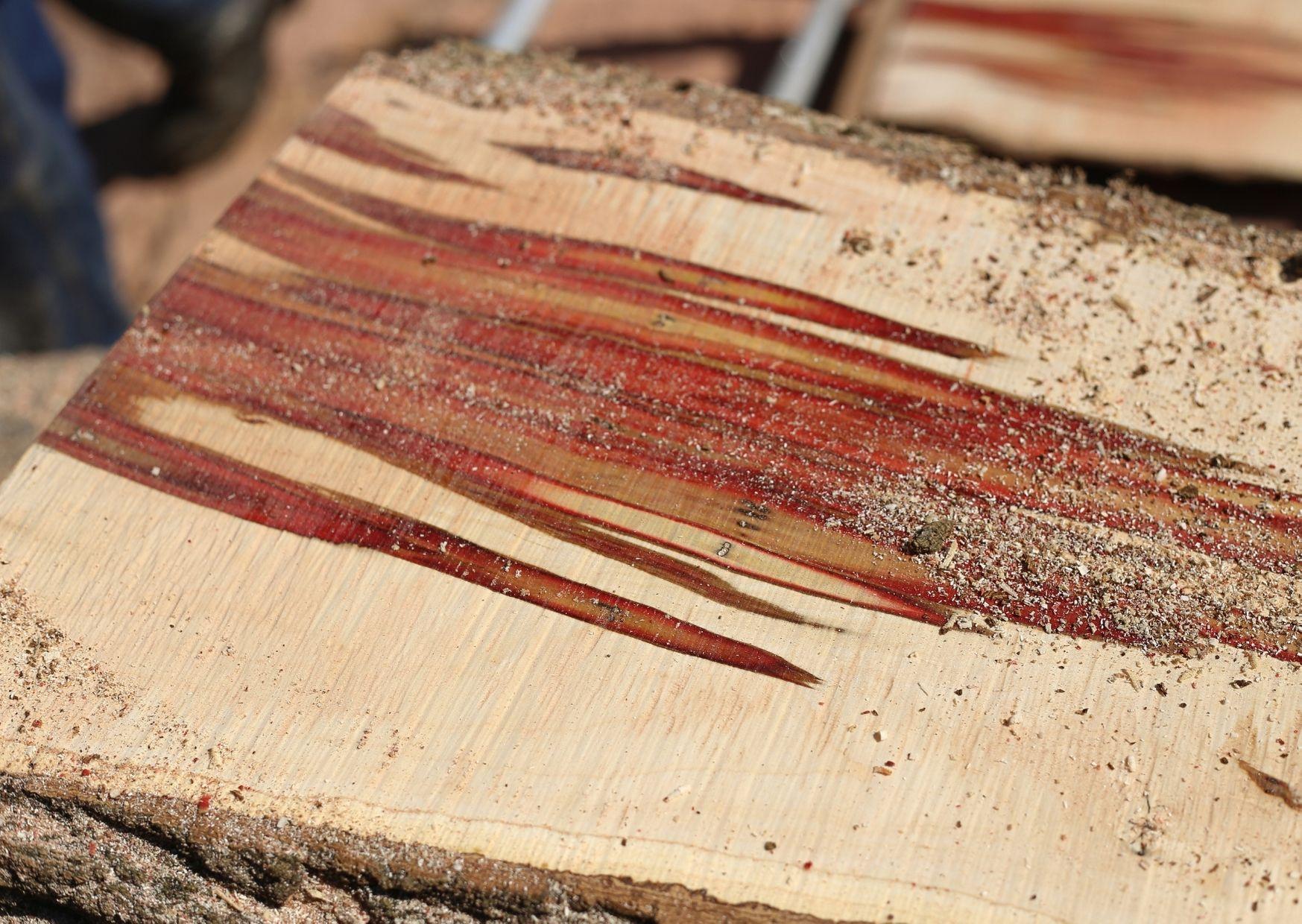 slab milling a tree